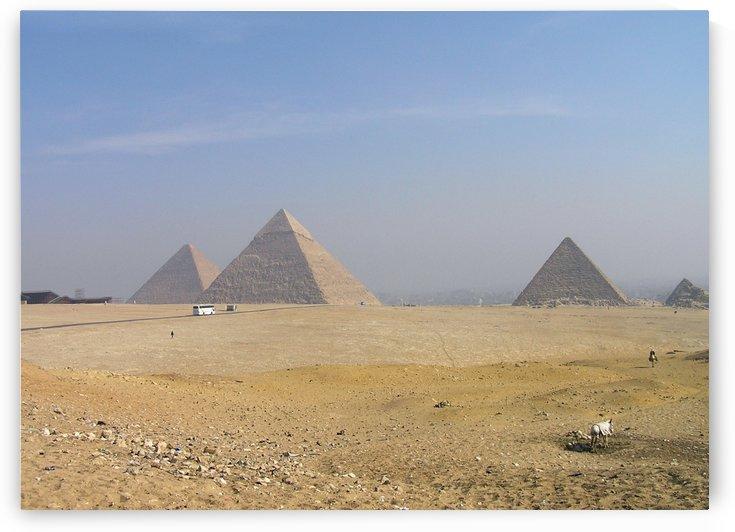 Egypt 1 by Jodi Webber