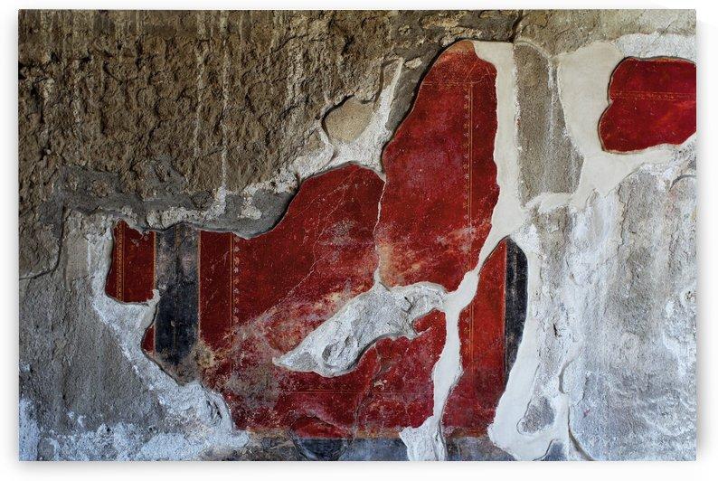 Pompei Fresco by Ira Silence