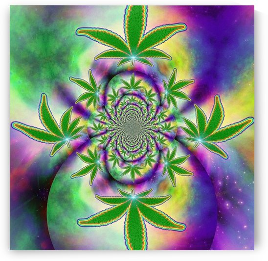 Marijuana Leaf by Bruce Rolff