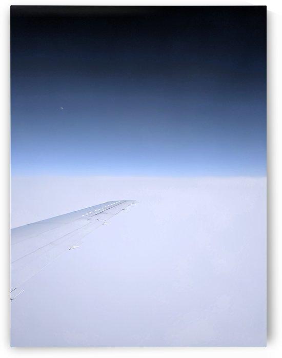 wing by Angelo A Keene