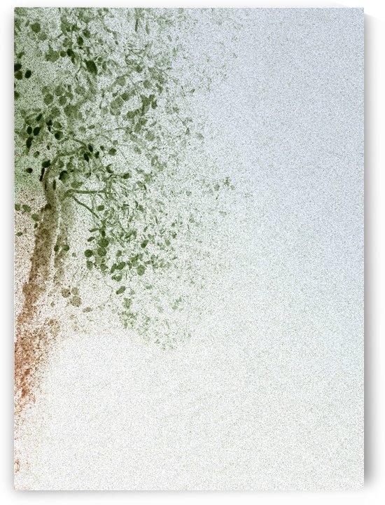 tree by Angelo A Keene