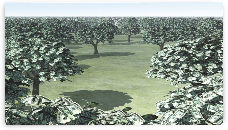 Garden of Money by Bruce Rolff