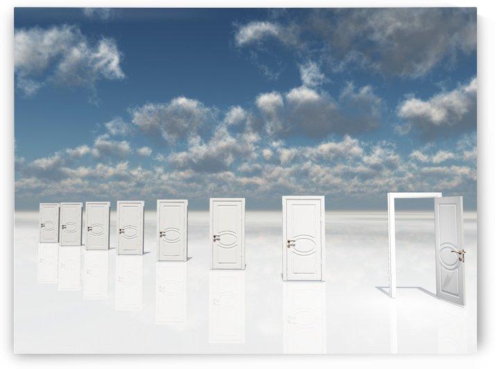 Doors by Bruce Rolff