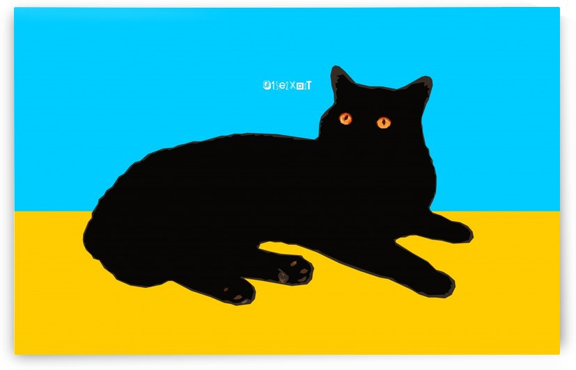 Cat on Yellow and Sky Blue by zelko radic bfvrp