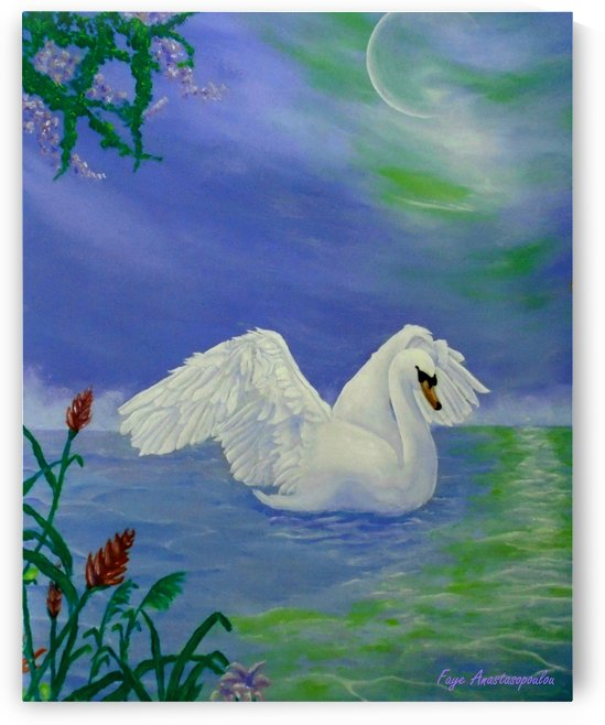 Swan Night by Fotini Anastasopoulou