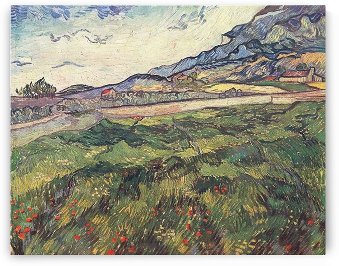Green wheat field by Van Gogh by Van Gogh