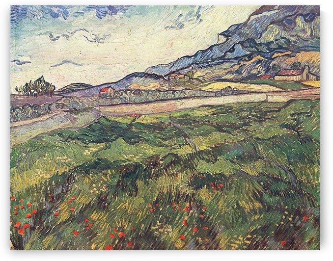 Green wheat field by Van Gogh by Van Gogh