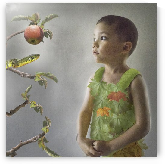 Adams apple by Tamer Mallak
