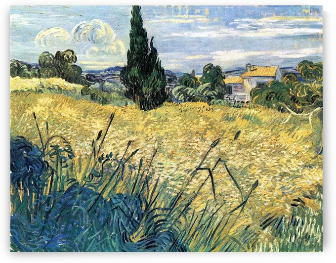 Green wheat field with cypress by Van Gogh by Van Gogh