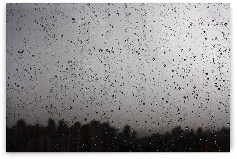 Afternoon Rain by Wagner Spirigoni