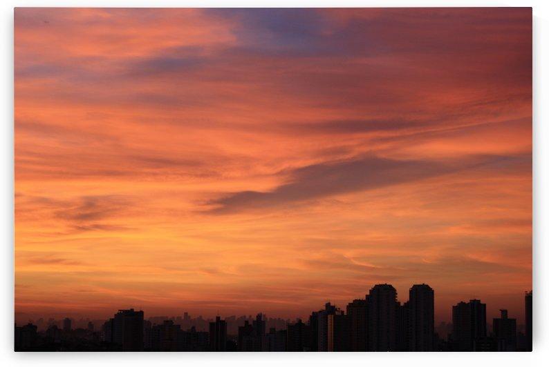 Sun Rising by Wagner Spirigoni