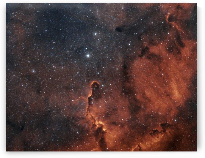 IC 1396 Elephant Trunk Nebula by RichardBoudreauAstrophotography