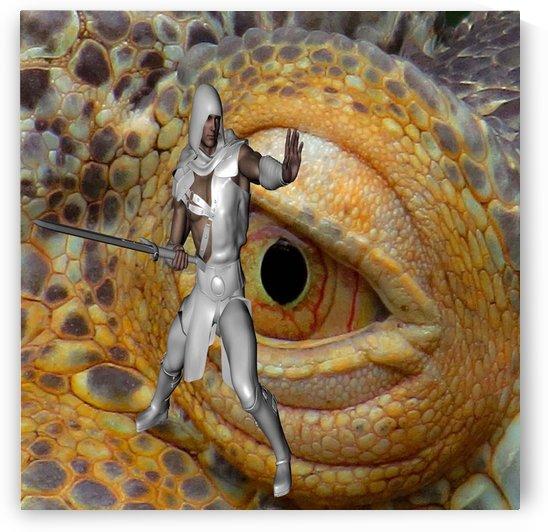 Dragon Slayer by Matthew Lacey