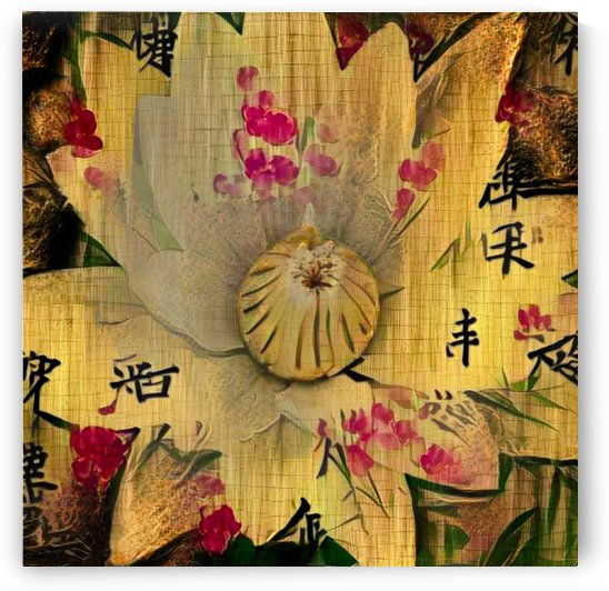 Asia Lotus by Bruce Rolff