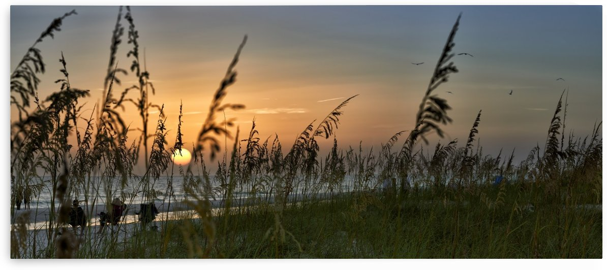 Sunset On Anna Maria Island by Adrian Brockwell