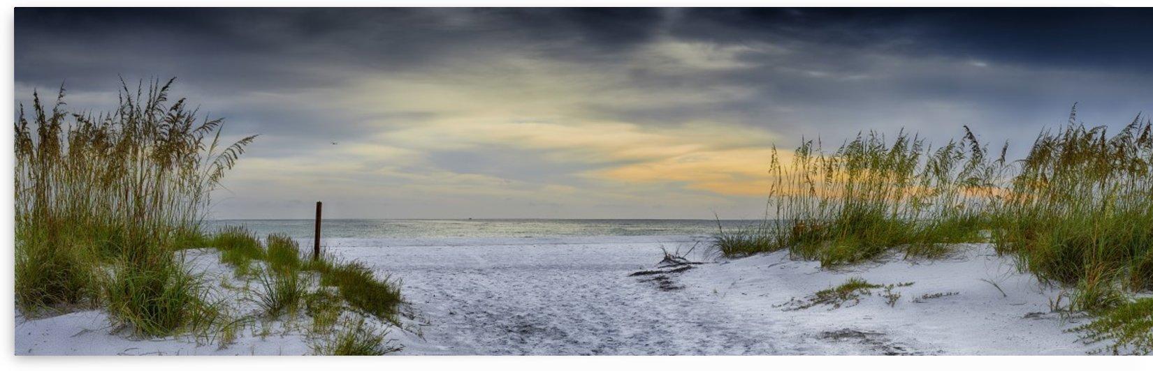 Holmes Beach by Adrian Brockwell