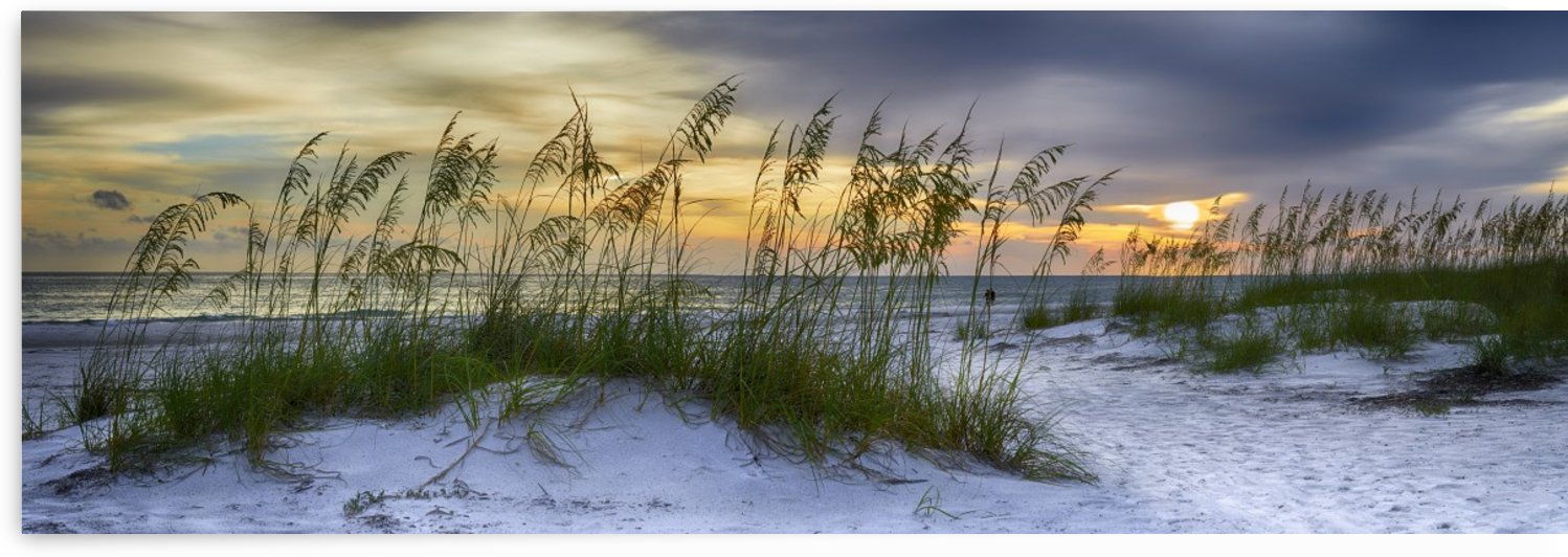 Sunset over Holmes Beach by Adrian Brockwell