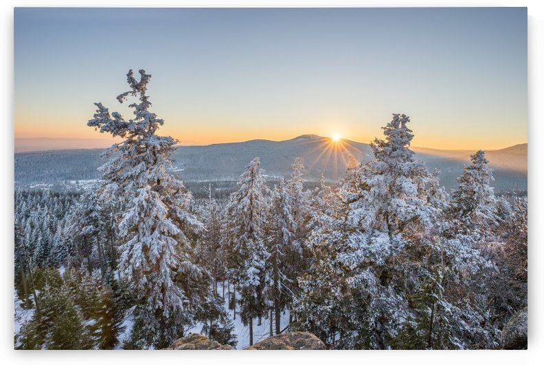 National Park Harz Winter by Patrice von Collani