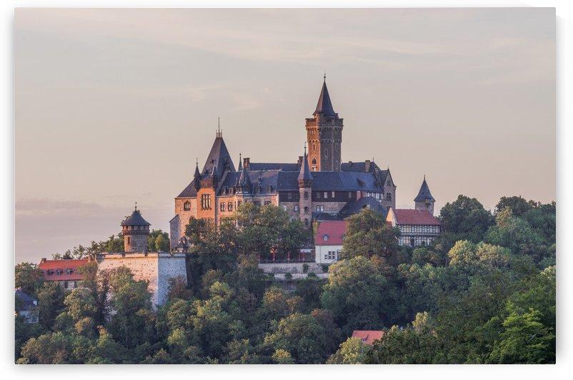 Wernigerode Castle by Patrice von Collani