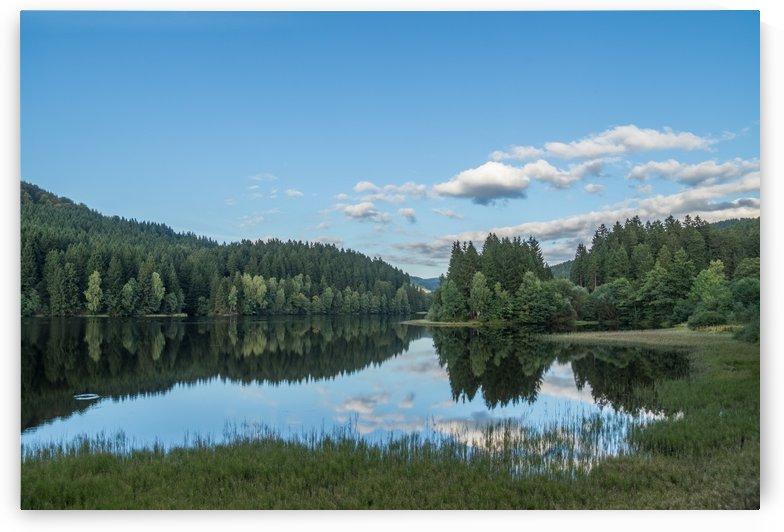 Dam Nature Park Harz by Patrice von Collani