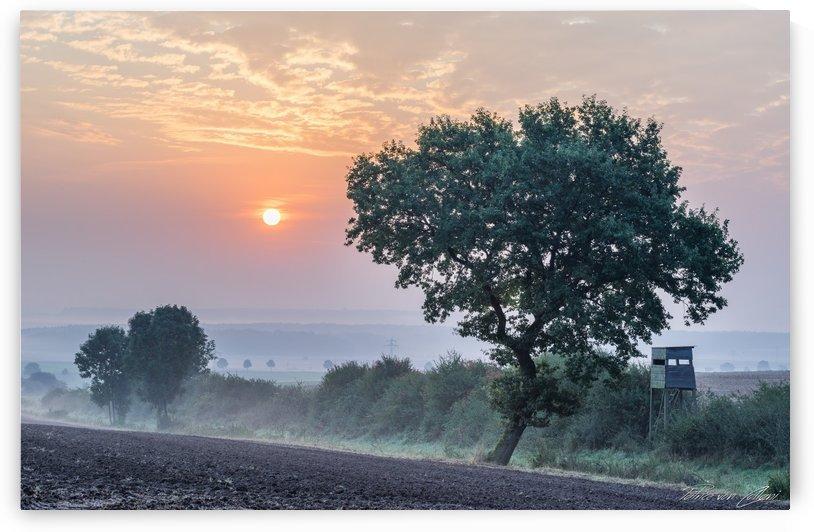 Autumn Morning by Patrice von Collani