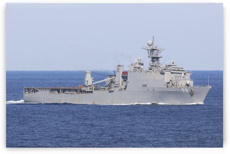The amphibious dock landing ship USS Carter Hall. by StocktrekImages