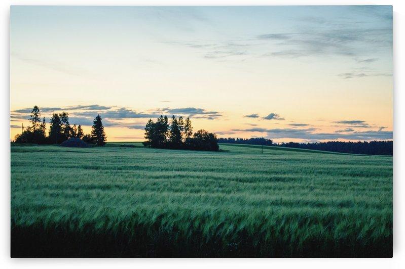 Midsummer sunset by Verstapost