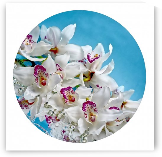 Orchids in blue by Lilia Varetsa