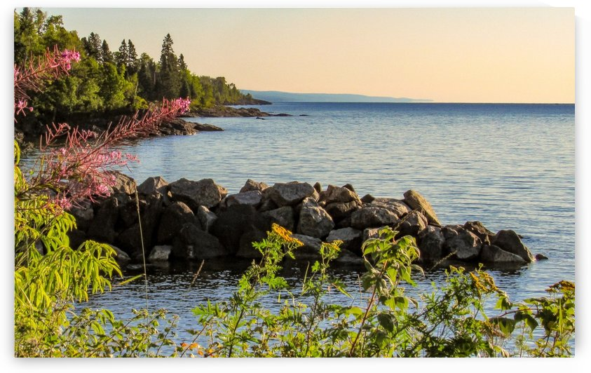 North Shore by Leora J Busch