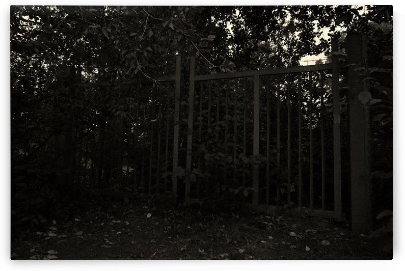Forgotten Gate by Nyvelius