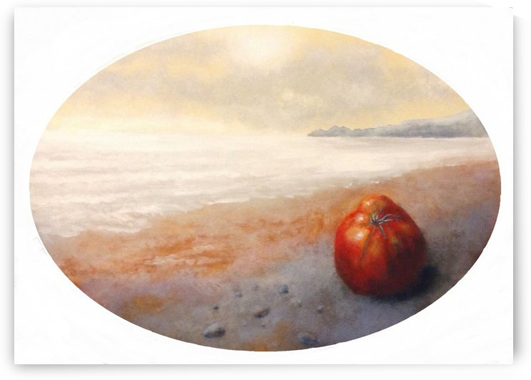 tomato on the sand of Cavi by franzini angelo