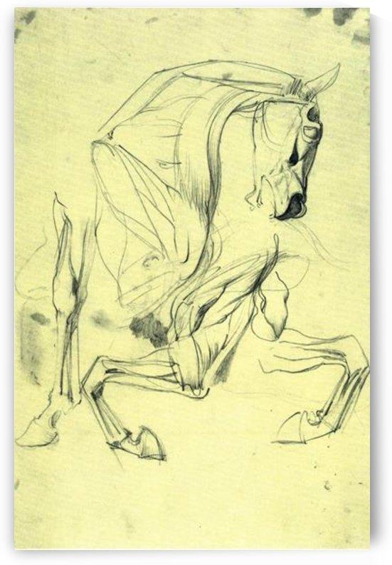 Horse study by Franz von Stuck by Franz von Stuck