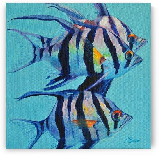 Three Old Wives a Coastal Fish of Australia by Angela Gunter Gunterhaus Art Studio