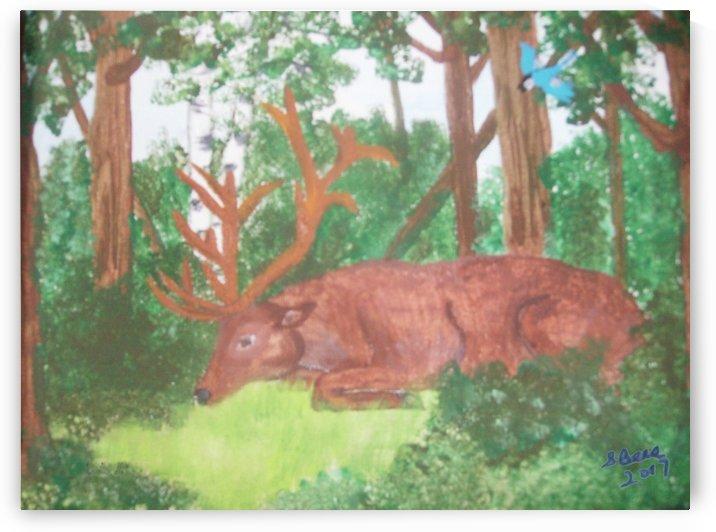 Maine Elk by Bells Paintings
