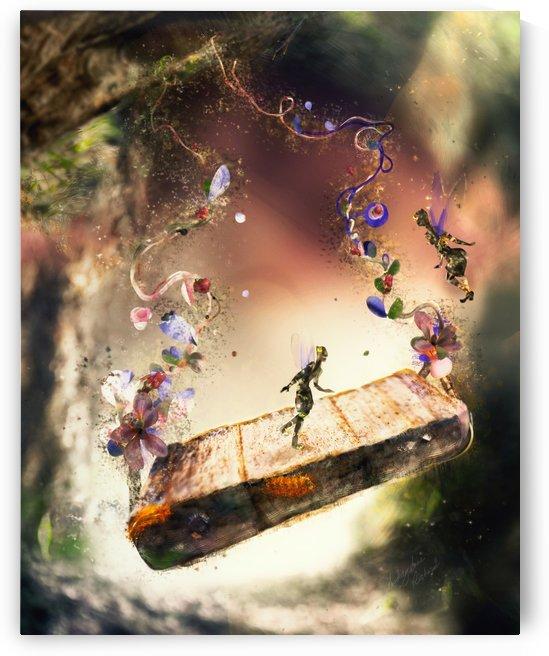 Fairy Swing by Audrey-Anne Richard