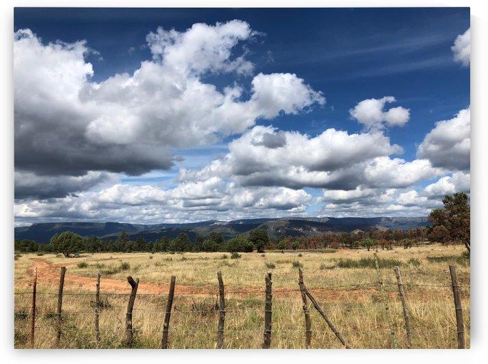 Fields of Clouds by Purplehaze_Photography