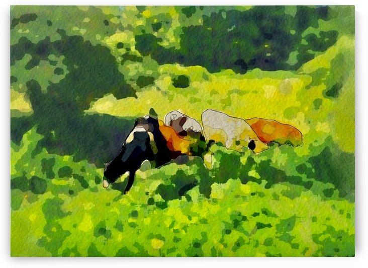 Cummington Cows by Harry Forsdick