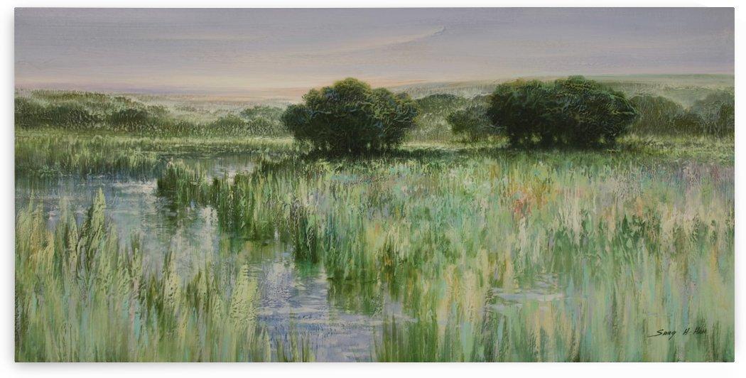 A River Run Through by Sang H Han