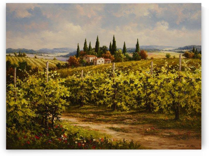 Elegant Vineyard by Sang H Han