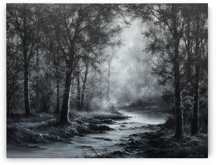 Moonlight Serenity by Sang H Han