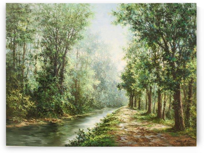 The Path of Wonder by Sang H Han
