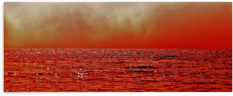 paint it red 2 by Anu Hamburg