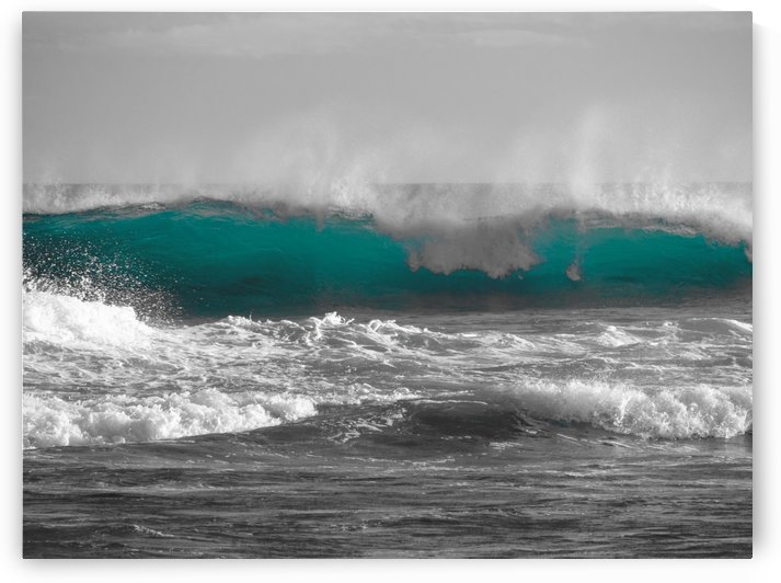Hawaiian Color by Asia Visions Photography
