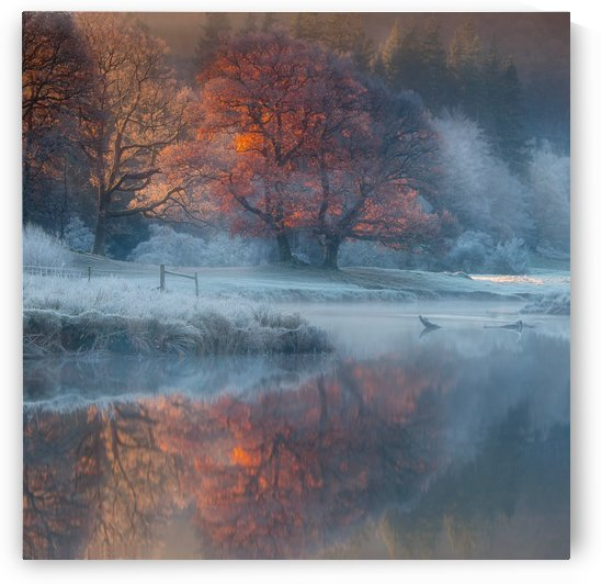 River Brathay by 1x