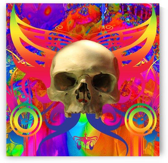 Skull Butterfly by Matthew Lacey