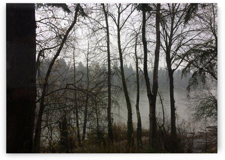 Willamette River View  by Robin Buckley