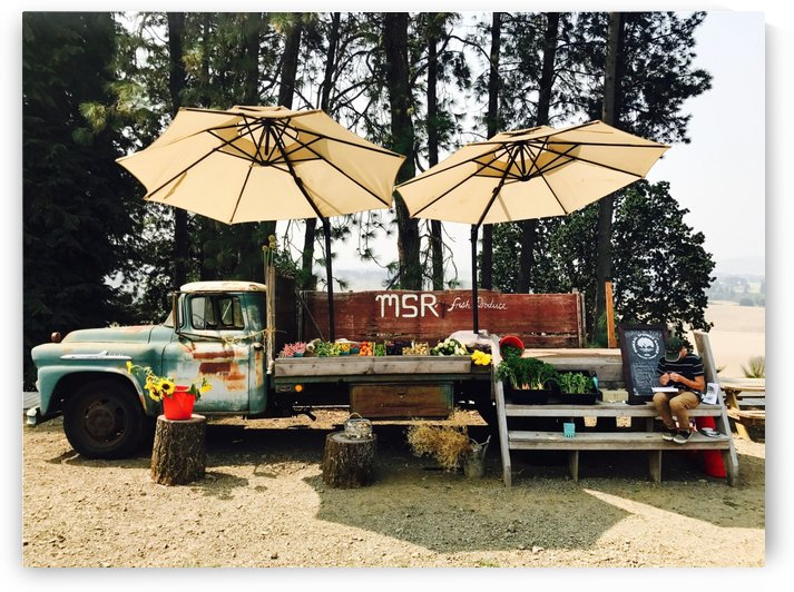 Vegetable Stand at Mineral Springs Ranch by Robin Buckley