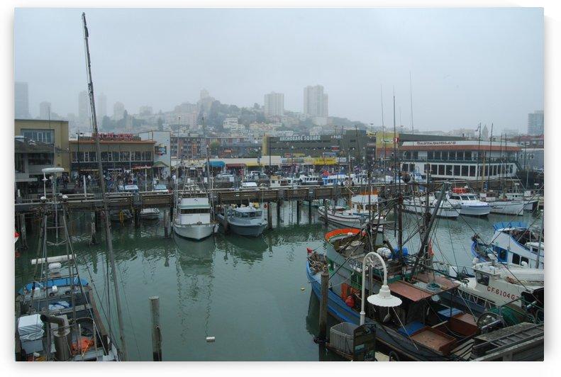 Misty Docks by Matthew Ulisse