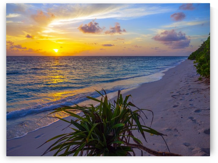 Ukulhas Shoreline by Asia Visions Photography