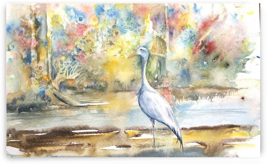 Blue Crane by Lesley Milne